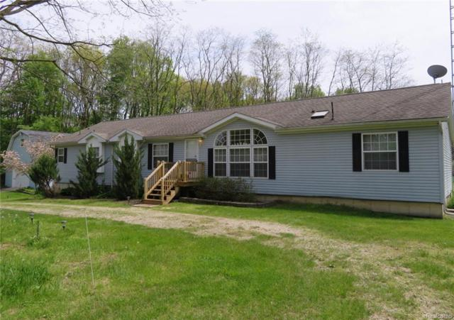 6730 Sheldon Road, Hamburg Twp, MI 48189 (#218043820) :: The Buckley Jolley Real Estate Team