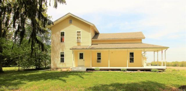 11123 Griffith Road, Hamlin Twp, MI 48827 (#630000226315) :: Duneske Real Estate Advisors