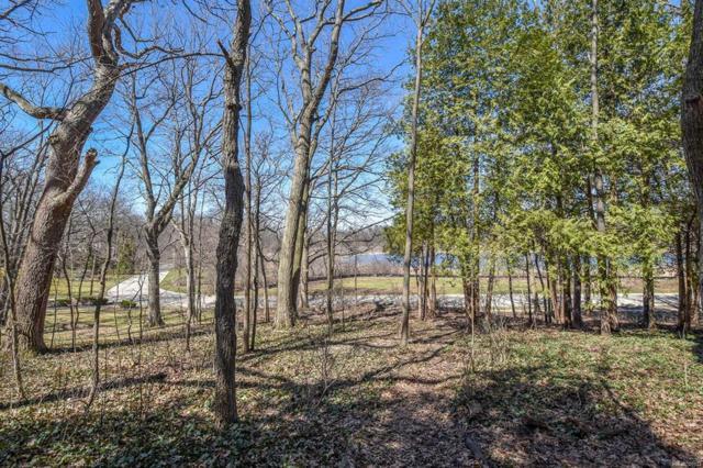 255 Parklake Avenue, Ann Arbor, MI 48103 (#543256871) :: Duneske Real Estate Advisors