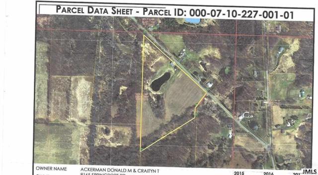 7350 Springport Rd, SANDSTONE CHARTER, MI 49269 (#55201801740) :: Duneske Real Estate Advisors