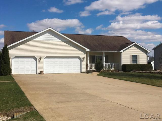 3167 Cobblestone Ridge, Raisin Twp, MI 49286 (#56031348110) :: Duneske Real Estate Advisors
