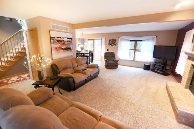 12615 Red Pine Lane, Perry Twp, MI 48872 (#630000226382) :: Duneske Real Estate Advisors