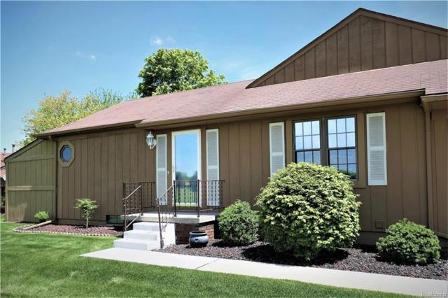 12101 Lexington Drive N #1, Green Oak Twp, MI 48178 (#218045003) :: The Buckley Jolley Real Estate Team
