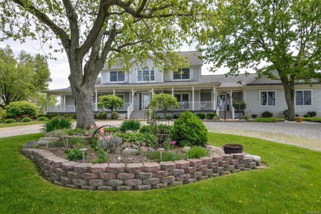 17571 Brewer Road, Dundee, MI 48131 (#543257084) :: RE/MAX Classic