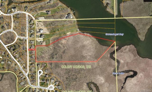 00 Oklahoma - Parcel C, Waterford Twp, MI 48327 (#218045447) :: Duneske Real Estate Advisors