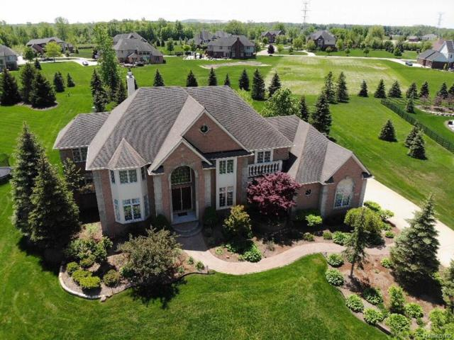 50985 Sunday Drive, Novi, MI 48167 (#218045606) :: RE/MAX Classic