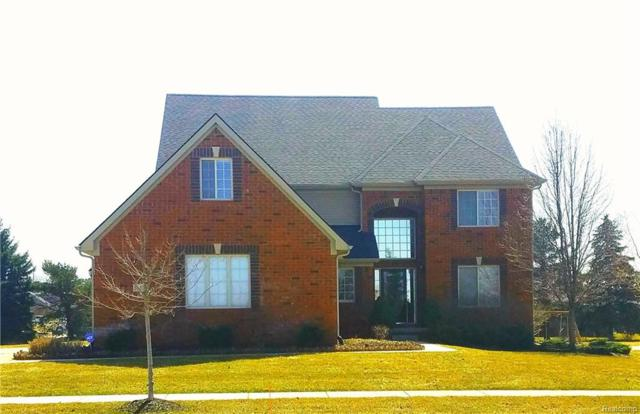 54125 Birchwood Drive, Lyon Twp, MI 48178 (#218045868) :: The Buckley Jolley Real Estate Team