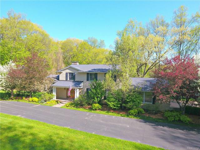 3186 E Duana Drive E, Milford Twp, MI 48380 (#218046073) :: The Buckley Jolley Real Estate Team