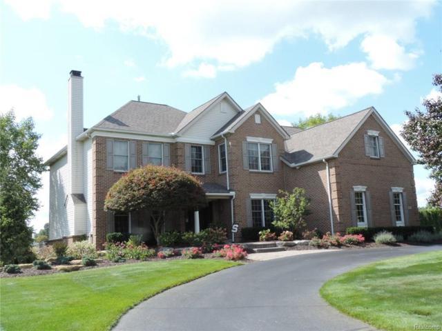 1587 Boulder Lake Drive, Milford Twp, MI 48380 (#218046471) :: The Buckley Jolley Real Estate Team