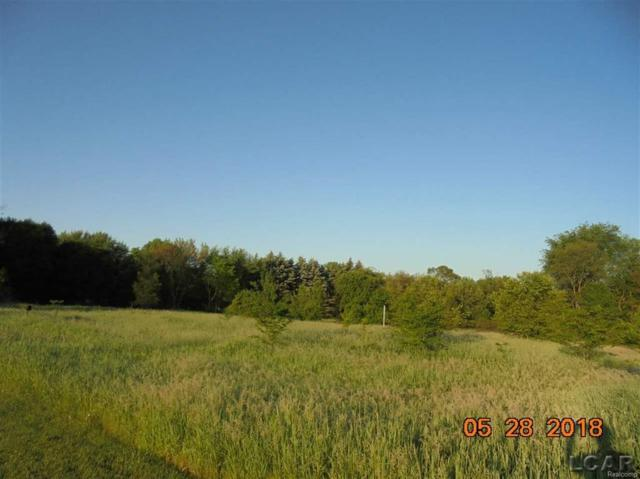 6000 Green Hwy Blk, Tecumseh, MI 49286 (#56031348707) :: RE/MAX Vision