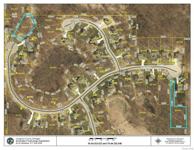 LOT 46 Painted Drive, Marion Twp, MI 48843 (#218047164) :: RE/MAX Classic