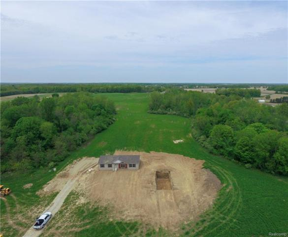 5844 Centennial Road, Raisin Twp, MI 49286 (#218047507) :: Duneske Real Estate Advisors