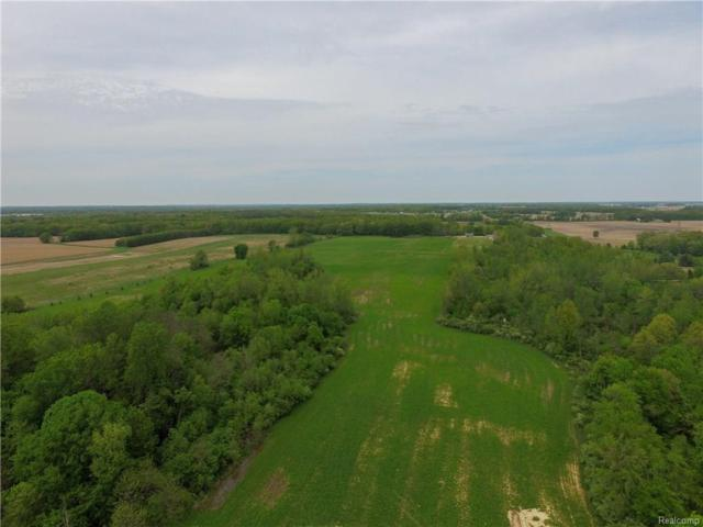 000 Billmyer Highway, Raisin Twp, MI 49286 (#218047531) :: Duneske Real Estate Advisors