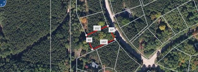 12379 Pine Mesa Drive, Austin Twp, MI 49346 (#218049232) :: The Buckley Jolley Real Estate Team