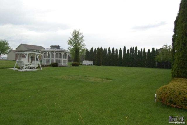 218 West Brooke Lane, Blissfield, MI 49228 (MLS #57003452534) :: The Toth Team