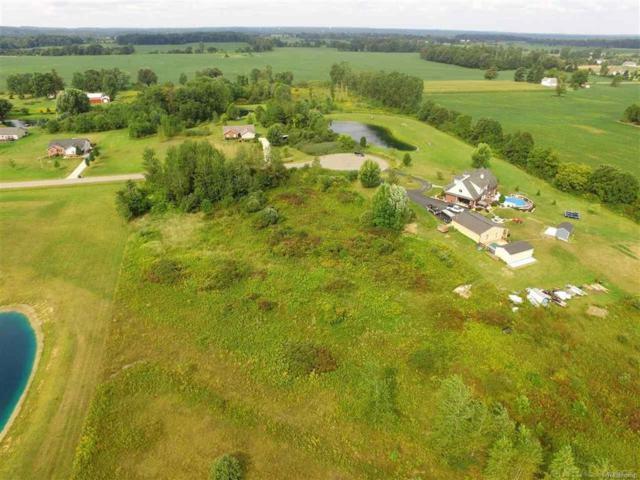 0 Old Farm Trail, Almont Twp, MI 48003 (#58031349736) :: RE/MAX Nexus