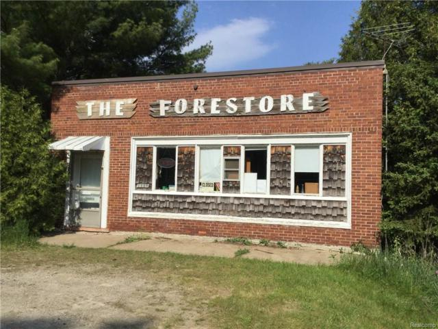 2440 Lakeshore Road, Forester Twp, MI 48419 (MLS #218050593) :: The Toth Team