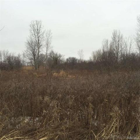 0 Hough, Almont Twp, MI 48003 (MLS #58031349893) :: The Toth Team