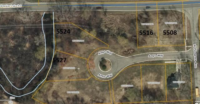 5524 Amys Way, Waterford Twp, MI 48327 (#218051121) :: The Buckley Jolley Real Estate Team