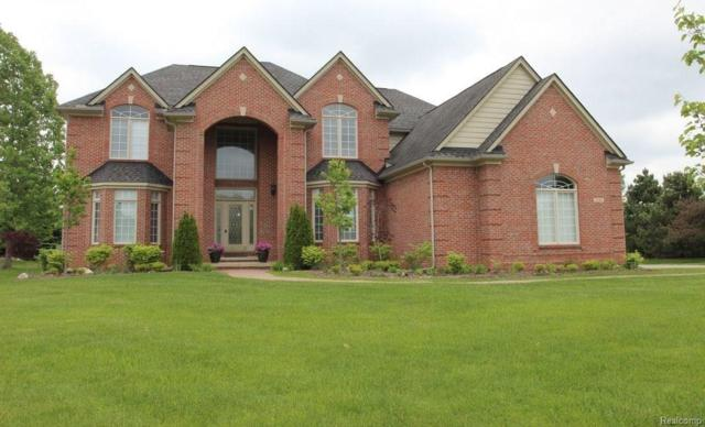 8206 Brookstone Lane, Independence Twp, MI 48348 (#218051620) :: Duneske Real Estate Advisors