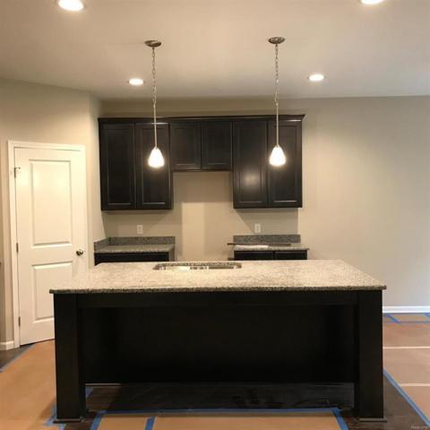 118 Campolina Street, Chelsea, MI 48118 (#543257354) :: The Buckley Jolley Real Estate Team