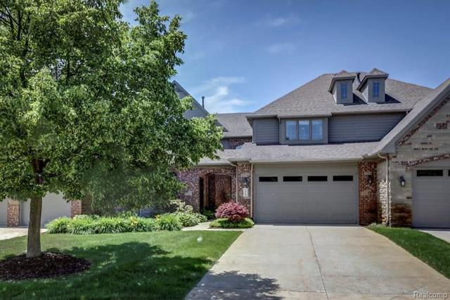 10783 Sparkling Waters Court, Green Oak Twp, MI 48178 (#218052724) :: The Mulvihill Group