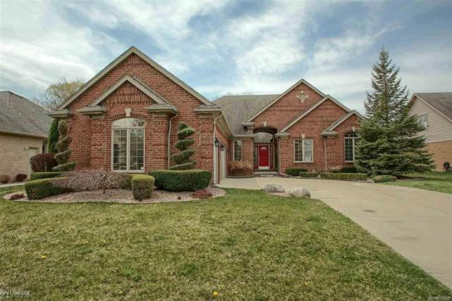 13378 Amberglen, Washington Twp, MI 48094 (MLS #58031350555) :: The Toth Team