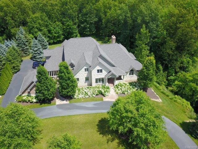 7348 Stonevalley Bluff, Springfield Twp, MI 48348 (#218053497) :: RE/MAX Vision