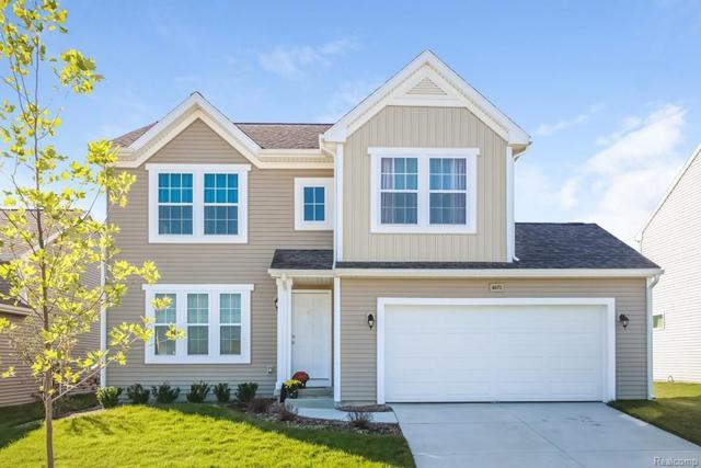 8565 Shiawassee Drive, Handy Twp, MI 48836 (#218053618) :: Duneske Real Estate Advisors