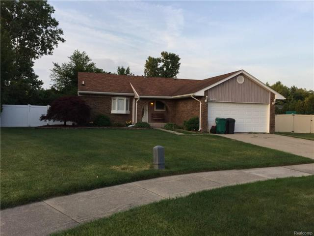 19696 N Plumwoode Court, Brownstown Twp, MI 48183 (#218054959) :: The Mulvihill Group