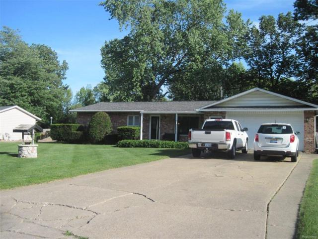 9426 Patricia, Forest Twp, MI 48463 (#50100002657) :: The Mulvihill Group