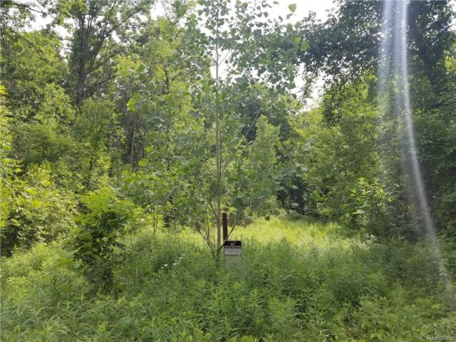 (Vacant) Baldwin Road, Orion Twp, MI 48362 (MLS #218055085) :: The Toth Team