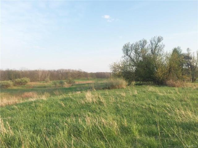 Lot 19 Brookside Drive, Bennington Twp, MI 48867 (#218055248) :: Novak & Associates