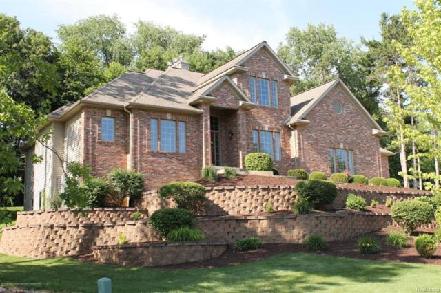 3941 Norway Pine Drive, Dewitt Twp, MI 48820 (#630000227366) :: Duneske Real Estate Advisors