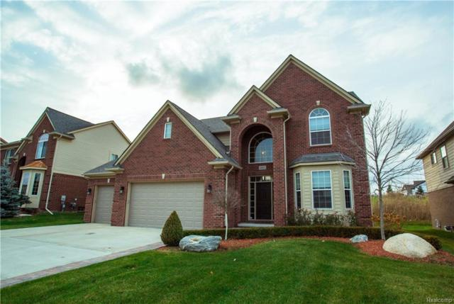 4802 Catalina Drive, Orion Twp, MI 48359 (MLS #218055702) :: The Toth Team