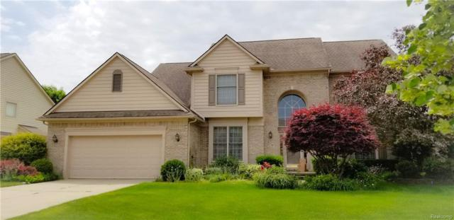 51245 W Hills Drive, Plymouth Twp, MI 48170 (#218055771) :: The Mulvihill Group