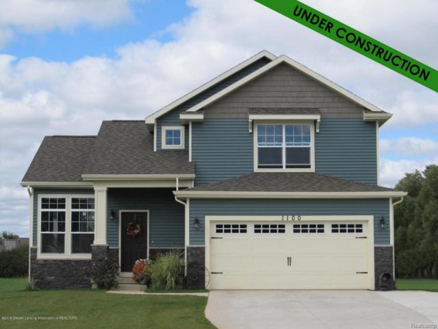 6700 Thunder Lane, Watertown Twp, MI 48837 (#630000227403) :: Duneske Real Estate Advisors