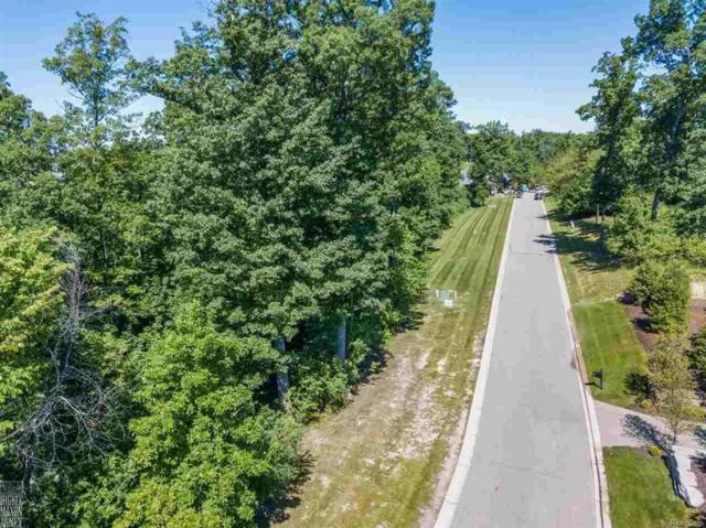 2705 Turtle Ridge Dr, Bloomfield Twp, MI 48302 (#58031351468) :: Duneske Real Estate Advisors