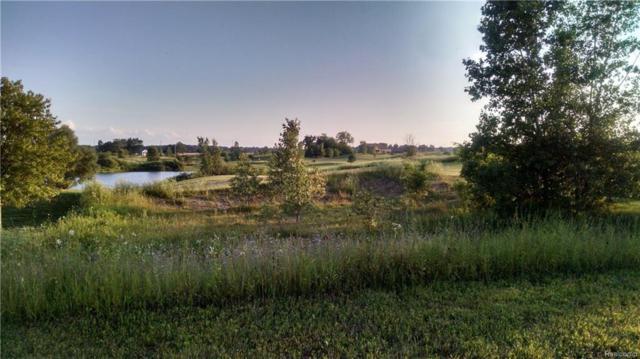 40 S Copper Ridge Drive S, Davison Twp, MI 48423 (#218057227) :: The Buckley Jolley Real Estate Team