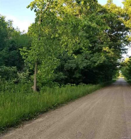 0 Jeddo Road, Lynn Twp, MI 48416 (#58031351571) :: RE/MAX Nexus