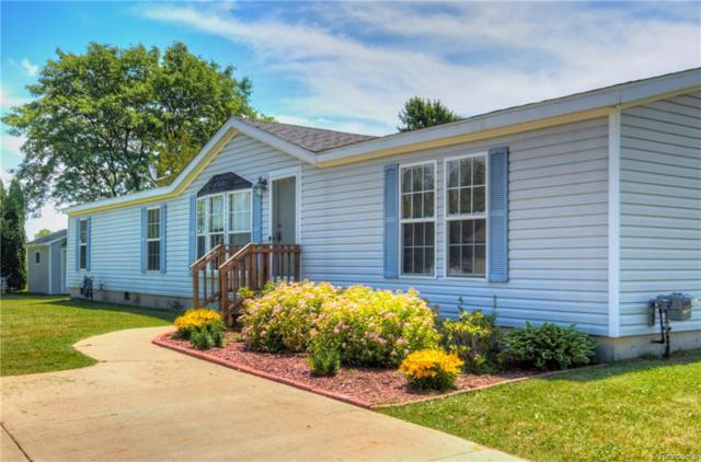 750 Peppermint Street, Attica Twp, MI 48412 (#218057367) :: RE/MAX Classic