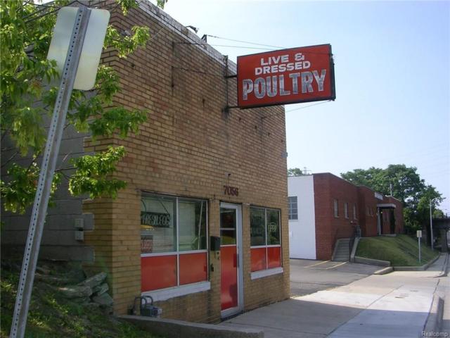 7056 Chase Road, Dearborn, MI 48126 (#218057608) :: RE/MAX Classic