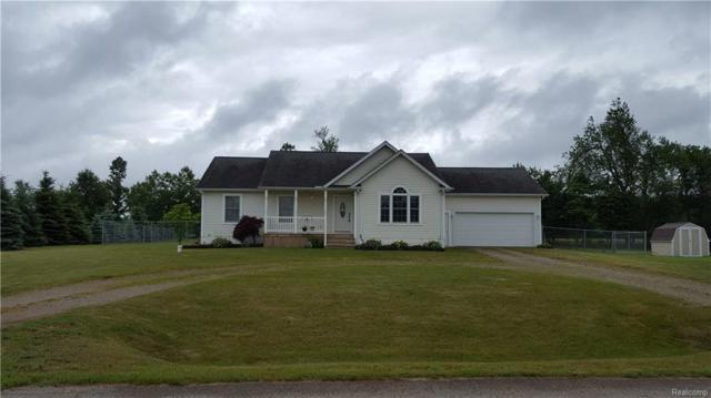 5732 Cobblestone Drive, North Branch Twp, MI 48461 (#218057687) :: RE/MAX Classic