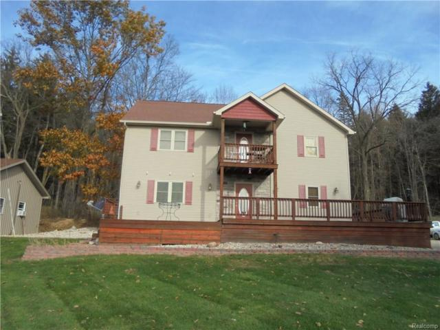 14166 Hickory Hill Drive, Woodstock Twp, MI 49253 (#218057782) :: RE/MAX Vision