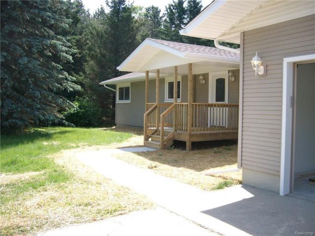 7805 Chase Lake Road, Conway Twp, MI 48836 (#218057962) :: Duneske Real Estate Advisors