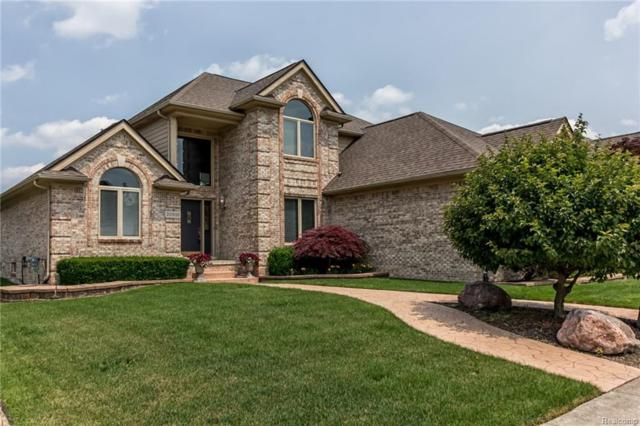 20010 Blackfoot Drive, Clinton Twp, MI 48038 (#218058357) :: Duneske Real Estate Advisors