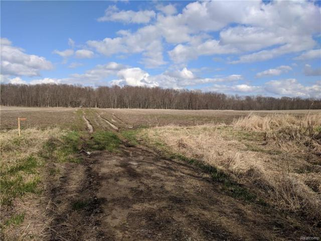 """12425 Bliven Parcel """"A"""" Only Road, Antrim Twp, MI 48857 (#218059655) :: RE/MAX Classic"""