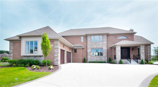 8395 Pier Point Court, Green Oak Twp, MI 48178 (#218059782) :: The Mulvihill Group