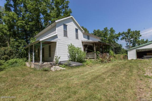 29271 F Dr, Albion Twp, MI 49224 (#62018030522) :: The Mulvihill Group