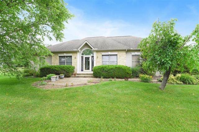 58 Fox Hill Court, Lima Twp, MI 48118 (#543258108) :: Duneske Real Estate Advisors